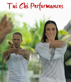 T'ai Chi Performances